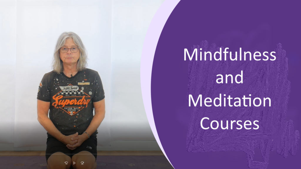 Mindfulness Meditation-Why Meditate?